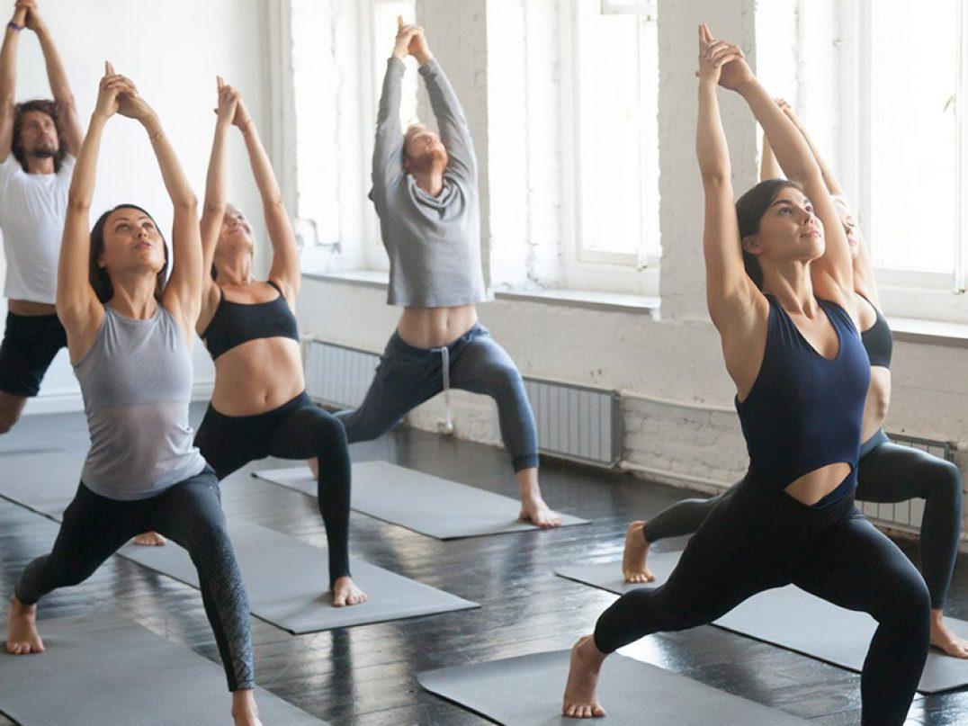 Yoga Professional Courses